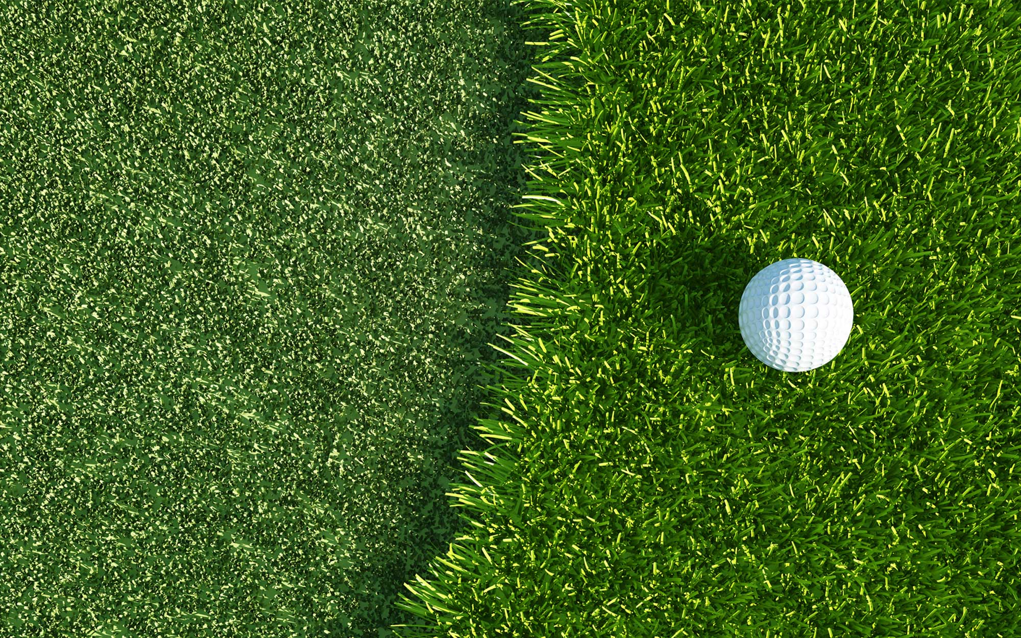 Experience Indoor Golf